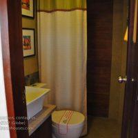 toilet-and-bath2
